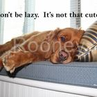 Rooney Says Poster: Don't be lazy. It's not that cute.