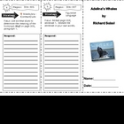 SF Reading Street Grade 4 Adelina&#039;s Whales Comprehension Trifold