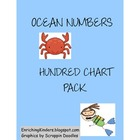 SPLASHING AROUND WITH THE HUNDRED CHART