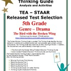 STAAR Released Drama Analysis: The Bird with a Broken Wing