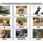 Safari Animals Matching and Keyboarding Practice