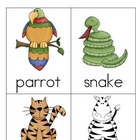 Safari Nomenclature 3 - Part Vocabulary Cards