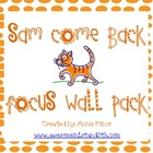 Sam Come Back Focus Wall Pack