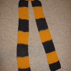 School Spirit Scarf