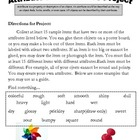 Science: Attributes and Properties of Matter Project Lette