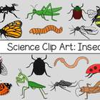 Science Clip Art: Insects {Personal & Commercial Use}