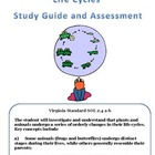Science:  Life Cycles Assessment and Study Guide
