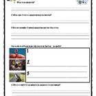  Science journal activities on animals