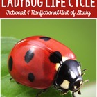 Science:The Ladybug Life Cycle and Literature: The Grouchy