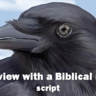 Script: Interview with a Biblical raven