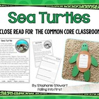 Sea Turtles {craftivity kit}