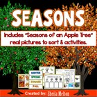 Seasons {Real pictures for sorting, recording sheets and p