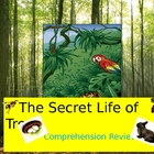 Secret Life of Trees  Harcourt  Comprehension Interactive