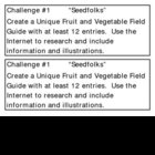 """Seedfolks"" by P. Fleischman, Project Challenges"
