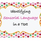 Sensory Language Sort