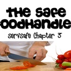 ServSafe Chapter 3 Bundle:  Powerpoint, Accompanying Notes