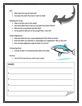 Shark Informational Report Writing Sheets, 12 Total Pages!!