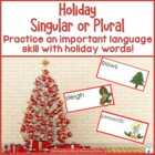 Singular and Plural Holiday Activity