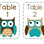 Smaller Set Owl Table Numbers and blank cards