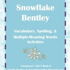 Snowflake Bentley Vocabulary & Spelling Activities