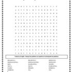 Spanish wordsearch Family Vocabulary; La familia en espanol
