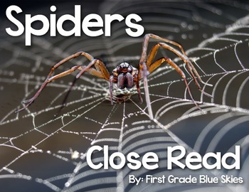 Spiders Close Read