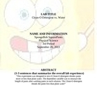 Spongebob Science Lab Report How to Guide
