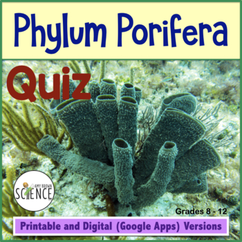 Sponges - Phylum Porifera - Quiz or Review