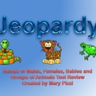 Spring Into Animal Jeopardy