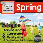 Spring Kindergarten Conference Report
