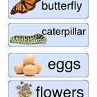 Spring Words abc Order Activity