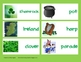 St. Patrick's Day Vocabulary {26 Cards + 12 Leprechaun Adj