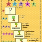 Star Writing Rubric