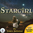 Stargirl Novel Unit ~ Common Core Standards Aligned!