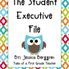 Student Executive File {Freebie}