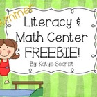 Summer Fun Literacy and Math {Mini} Freebie