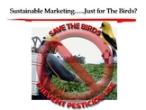 Sustainable Marketing.......Just for the Birds? PPT