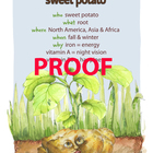 Sweet Potato Poster - Available in English and Spanish!