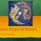 Symbols of Dragons and Phoenixes