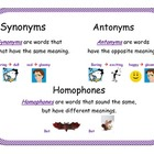 Synonym, Antonym, and Homophone poster