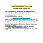 THE METAMORPHOSIS - Illustrated/Textual Quiz
