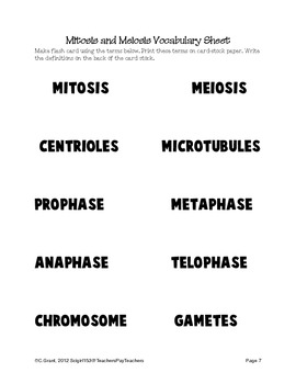 Teaching Mitosis and Meiosis Lesson Plan