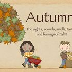 The 5 Senses of Autumn Slideshow
