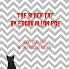 The Black Cat (by Edgar Allan Poe) Questions + Key
