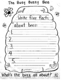 The Busy Buzzy Bee Packet- All About Bees