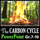 The Carbon Cycle - PowerPoint