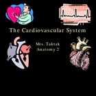 The Cardiovascular System ppt