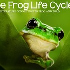 The Frog Life Cycle and Frog and Toad By Arnold Lobel