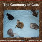 The Geometry of Cats Powerpoint Show (Excerpt)