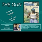 The Gun Bluford Series